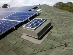SFA model fan installed on green roof